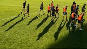 17 January 2020; A general view during the Leinster Rugby captain's run at Stadio Comunale di Monigo in Treviso, Italy. Photo by Ramsey Cardy/Sportsfile