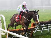 23 January 2020; Aione, with Rachael Blachmore up, jumps the last on their way to winning the Connolly's Red Mills Irish EBF Ladies Auction Maiden Hurdle at Gowran Park in Kilkenny. Photo by Matt Browne/Sportsfile