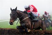 23 January 2020; Total Recall, with Danny Mullins up, jumps the last on their way to winning the Goffs Thyestes Handicap Steeplechase at Gowran Park in Kilkenny. Photo by Matt Browne/Sportsfile