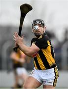 2 February 2020; Richie Hogan of Kilkenny scores a point during the Allianz Hurling League Division 1 Group B Round 2 match between Carlow and Kilkenny at Netwatch Cullen Park in Carlow. Photo by David Fitzgerald/Sportsfile