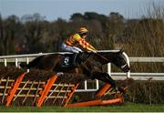2 February 2020; Hammersmith, with Kevin Brouder up, during the Tattersalls Ireland Spring Juvenile Hurdle on Day Two of the Dublin Racing Festival at Leopardstown Racecourse in Dublin. Photo by Harry Murphy/Sportsfile