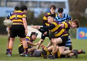 6 February 2020; Robert Reynolds of CBS Wexford during the Bank of Ireland Leinster Schools Junior Cup First Round match between CBS Wexford and Castleknock College at Greystones RFC in Wicklow. Photo by Matt Browne/Sportsfile