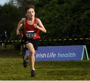 8 February 2020; Seamus O'Donoghue from Kenmare AC, Co Kerry, on his way to winning the Boys Under-13 Cross Country race during the Irish Life Health National Intermediate, Master, Juvenile B & Relays Cross Country at Avondale in Rathdrum, Co Wicklow. Photo by Matt Browne/Sportsfile
