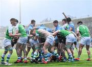 11 February 2020; St Michaels College players celebrate their side's third try during the Bank of Ireland Leinster Schools Senior Cup Second Round match between Gonzaga College and St Michaels College at Energia Park in Dublin. Photo by Ramsey Cardy/Sportsfile