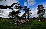 12 February 2020; A general view of runners at the start of the Intermediate Girls race during the Irish Life Health Leinster Schools' Cross Country Championships 2020 at Santry Demesne in Dublin. Photo by David Fitzgerald/Sportsfile