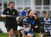 15 February 2020; Action from the Bank of Ireland Half-Time Minis bteween Athy RFC and Longford RFC at the Guinness PRO14 Round 11 match between Leinster and Toyota Cheetahs at the RDS Arena in Dublin. Photo by Harry Murphy/Sportsfile
