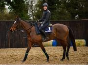 18 February 2020; Tiger Roll, with Katie Young up, during a visit to Gordon Elliott's yard in Longwood, Co. Meath. Photo by Harry Murphy/Sportsfile