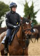 18 February 2020; Katie Young on Tiger Roll during a visit to Gordon Elliott's yard in Longwood, Co. Meath. Photo by Ramsey Cardy/Sportsfile
