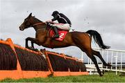 18 February 2020; Floueur, with Davy Russell up, jump the last on their way to finishing third in the Surehaul Mercedes-Benz Novice Hurdle at Punchestown Racecourse in Kildare. Photo by Harry Murphy/Sportsfile