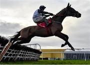18 February 2020; Pencilfulloflead, with Robbie Power up, jumps the last, on their way to winning the Leinster Leader Maiden Hurdle at Punchestown Racecourse in Kildare. Photo by Harry Murphy/Sportsfile