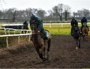 19 February 2020; Elish Byrne on Sharjah during a Willie Mullins Yard visit at Closutton in Bagenalstown, Co Carlow. Photo by Harry Murphy/Sportsfile