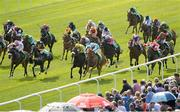 29 June 2013; The runners and riders in the Paddy Power Sprint which was eventually won by Burn The Boats, with Gary Carroll up. Curragh Racecourse, The Curragh, Co. Kildare. Picture credit: Diarmuid Greene / SPORTSFILE