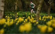 7 March 2020; Sean O'Leary of St Brendans, Co Kerry, competing in the Senior Boys race during the Irish Life Health All-Ireland Schools Cross Country Championships at Santry Demesne in Santry, Dublin. Photo by David Fitzgerald/Sportsfile