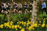 7 March 2020; Runners competing in the Senior Boys race during the Irish Life Health All-Ireland Schools Cross Country Championships at Santry Demesne in Santry, Dublin. Photo by David Fitzgerald/Sportsfile