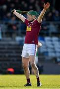 8 March 2020; Darragh Clinton of Westmeath during the Allianz Hurling League Division 1 Relegation Play-Off match between Westmeath and Carlow at TEG Cusack Park in Mullingar, Westmeath. Photo by Seb Daly/Sportsfile