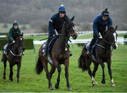 9 March 2020; Katie Young on Abacadabras on the gallops ahead of the Cheltenham Racing Festival at Prestbury Park in Cheltenham, England. Photo by Harry Murphy/Sportsfile