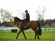 9 March 2020; Jockey Keith Donoghue on Envoi Allen on the gallops ahead of the Cheltenham Racing Festival at Prestbury Park in Cheltenham, England. Photo by Harry Murphy/Sportsfile