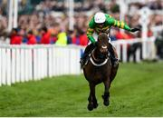 10 March 2020; Epatante, with Barry Geraghty up, celebrates on their way to winning the Unibet Champion Hurdle Challenge Trophy on Day One of the Cheltenham Racing Festival at Prestbury Park in Cheltenham, England. Photo by Harry Murphy/Sportsfile