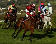 11 March 2020; Tiger Roll, with Keith Donoghue up, during the Glenfarclas Chase during Day Two of the Cheltenham Racing Festival at Prestbury Park in Cheltenham, England. Photo by Harry Murphy/Sportsfile