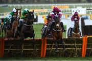 13 March 2020; Embittered, with JJ Slevin up, right, leads eventual winner Saint Roi, with Barry Geraghty up, jump the last during the Randox Health County Handicap Hurdle on Day Four of the Cheltenham Racing Festival at Prestbury Park in Cheltenham, England. Photo by Harry Murphy/Sportsfile