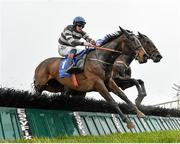 15 March 2020; Well Set Up, left, with Ricky Doyle up, jumps the last on their way to winning the Kerry Group Irish EBF Shannon Spray Mares Novice Hurdle at Limerick Racecourse in Patrickswell, Limerick. Photo by Seb Daly/Sportsfile