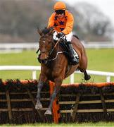 21 March 2020; My Newbrook Rose, with Jonathan Moore up, jump the last on their way to winning The BetVictor Handicap Hurdle at Thurles Racecourse in Tipperary. Photo by Matt Browne/Sportsfile