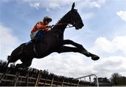 24 March 2020; Farmix, with Donagh Meyler up, jumps the last on their way to winning the Money Back On The BoyleSports App Maiden Hurdle at Clonmel Racecourse in Clonmel, Tipperary. Photo by Seb Daly/Sportsfile