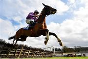 24 March 2020; Cosa Ban, with Luke Dempsey up, jumps the last on their way to winning the Play Lotto On The BoyleSports App Maiden Hurdle at Clonmel Racecourse in Clonmel, Tipperary. Photo by Seb Daly/Sportsfile