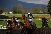 24 March 2020; Mutadaffeq, centre, with Jonathan Moore up, jumps the last alongside eventual second place Bitsandpieces, left, with Simon Torrens up, on their way to winning the Live Streaming On The BoyleSports App Beginners Steeplechase at Clonmel Racecourse in Clonmel, Tipperary. Photo by Seb Daly/Sportsfile