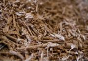 31 March 2020; Wood shavings during a feature on The Star Hurley in Jenkinstown, Kilkenny. Photo by Ramsey Cardy/Sportsfile