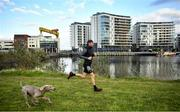 7 May 2020; Irish Olympic Marathon Runner Stephen Scullion during a training session with his dog Nala the Weimaraner at the Titanic Quarter in Belfast, Northern Ireland. Photo by David Fitzgerald/Sportsfile