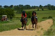 4 June 2020; Jockey Gary Halpin, right, and Neil Ryan on the gallops at the yard of horse racing trainer Kevin Prendergast in Firarstown in Kildare. Horse racing is due to return to Ireland behind closed doors on June 8, after racing was suspended in an effort to contain the spread of the Coronavirus (COVID-19) pandemic. Photo by Harry Murphy/Sportsfile