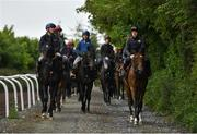 7 June 2020; Anna Barlow on Early Doors and Stephen Byrne on Presgrave lead a string back to the yard during a Joseph O'Brien Yard Visit at Owning Hill in Kilkenny. Horse racing is due to return to Ireland behind closed doors on June 8, after racing was suspended in an effort to contain the spread of the Coronavirus (COVID-19) pandemic. Photo by Harry Murphy/Sportsfile