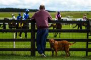 27 June 2020; A spectator, with his dog, watch on ahead of the Dubai Duty Free Tennis Championships Handicap during day two of the Dubai Duty Free Irish Derby Festival at The Curragh Racecourse in Kildare. Horse Racing continues behind closed doors following strict protocols having been suspended from March 25 due to the Irish Government's efforts to contain the spread of the Coronavirus (COVID-19) pandemic. Photo by Harry Murphy/Sportsfile