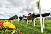 10 July 2020; Mengli Khan, with Luke Dempsey up, crosses the line to win the KilbegganRaces.com Hurdle at Kilbeggan Racecourse in Kilbeggan, Westmeath. Photo by Seb Daly/Sportsfile