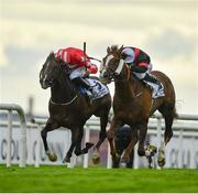 28 July 2020; Saltonstall, right, with Gavin Ryan up, beats Njord, with Tom Madden up, by a nose to win the COLM QUINN BMW Mile Handicap on day two of the Galway Summer Racing Festival at Ballybrit Racecourse in Galway. Horse racing remains behind closed doors to the public under guidelines of the Irish Government in an effort to contain the spread of the Coronavirus (COVID-19) pandemic. Photo by Harry Murphy/Sportsfile