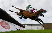 30 July 2020; Russian Diamond, with David Mullins up, front, falls at the fourth fence, alongside Scheu Time, with Gearoid Brouder up, who finished fifth, during the Rockshore Novice Steeplechase on day four of the Galway Summer Racing Festival at Ballybrit Racecourse in Galway. Horse racing remains behind closed doors to the public under guidelines of the Irish Government in an effort to contain the spread of the Coronavirus (COVID-19) pandemic. Photo by Harry Murphy/Sportsfile