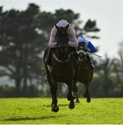 30 July 2020; Jon Snow, with Paul Townend up, on their way to winning the Guinness Novice Hurdle on day four of the Galway Summer Racing Festival at Ballybrit Racecourse in Galway. Horse racing remains behind closed doors to the public under guidelines of the Irish Government in an effort to contain the spread of the Coronavirus (COVID-19) pandemic. Photo by Harry Murphy/Sportsfile