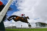 31 July 2020; Nibblers Charm, with Simon Torrens up, jumps the last, on their way to winning the Guinness Galway Tribes Handicap Hurdle on day five of the Galway Summer Racing Festival at Ballybrit Racecourse in Galway. Horse racing remains behind closed doors to the public under guidelines of the Irish Government in an effort to contain the spread of the Coronavirus (COVID-19) pandemic. Photo by Harry Murphy/Sportsfile