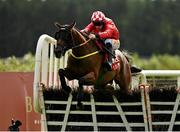 9 September 2020; Red Gerry, with Sean Flanagan up, jumps the last on their way to winning the Westgrove Hotel Maiden Hurdle at Punchestown Racecourse in Kildare. Photo by Seb Daly/Sportsfile