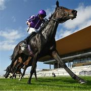 13 September 2020; Shale, with Ryan Moore up, on their way to winning the Moyglare Stud Stakes during day two of The Longines Irish Champions Weekend at The Curragh Racecourse in Kildare. Photo by Seb Daly/Sportsfile
