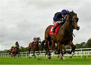 16 September 2020; No Patience, with Andrew Slattery up, on their way to winning the CorkRacecourse.ie Nursery Handicap at Cork Racecourse in Mallow. Photo by Seb Daly/Sportsfile