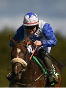 23 September 2020; Belfast Banter, with Kevin Sexton up, during the Remembering Tommy McGivern Maiden Hurdle at Listowel Racecourse in Kerry. Photo by Harry Murphy/Sportsfile