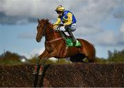 23 September 2020; Our Roxane, with Kevin Brouder up, jumps the last, first time round, during the Ballygarry House Hotel Mares Novice Steeplechase at Listowel Racecourse in Kerry. Photo by Harry Murphy/Sportsfile