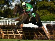 23 September 2020; Pump Road, with Paul Enright up jumps the last during the Devon Inn Hotel Handicap Hurdle at Listowel Racecourse in Kerry. Photo by Harry Murphy/Sportsfile