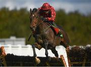 23 September 2020; Stealthy Tom, with Darragh O'Keeffe up, jumps the last during the Remembering Tommy McGivern Maiden Hurdle at Listowel Racecourse in Kerry. Photo by Harry Murphy/Sportsfile