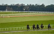 15 October 2020; A string of horses return from the gallops prior to racing at The Curragh Racecourse in Kildare. Photo by Seb Daly/Sportsfile