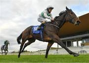 15 October 2020; Flor De La Luna, with Shane Foley up, on their way to winning the Equilux Costs Less Than 2 Euro A Week Maiden at The Curragh Racecourse in Kildare. Photo by Seb Daly/Sportsfile