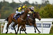 17 October 2020; Surrounding, left, with Ronan Whelan up, races alongside eventual second place Laughifuwant, with Gary Carroll up, on their way to winning the Knockaire Stakes at Leopardstown Racecourse in Dublin. Photo by Seb Daly/Sportsfile