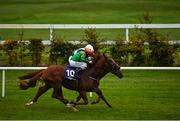 17 October 2020; Lobo Rojo, near, with Shane Foley up, races alongside eventual second place Vermilion Cliffs, far, with Padraig Beggy up, on their way to winning the Leopardstown Members Club Maiden at Leopardstown Racecourse in Dublin. Photo by Seb Daly/Sportsfile